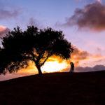 Sunset at Los Verdes