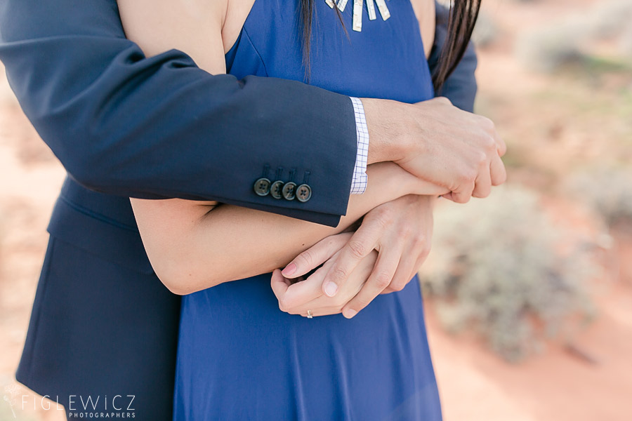 Valley of Fire Engagement