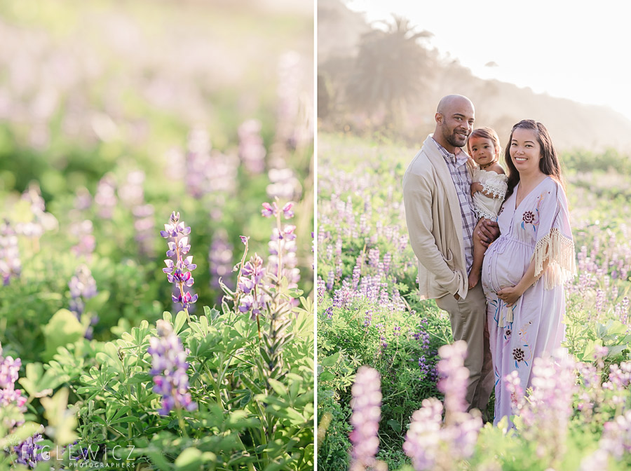 Palos Verdes Wild Flower Maternity