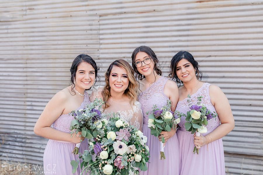 Smokey Hollows Bridal party